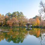 Musim Gugur di Suzhou Tiongkok - 476